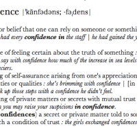 The Meaning of Confidence