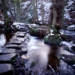 A Day in the Woods @ Rivelin Valley, Sheffield. All images by Myself!